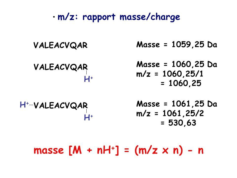 masse [M + nH+] = (m/z x n) - n